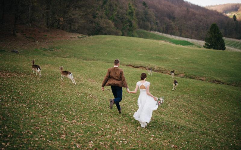 Jelenov Greben wedding / Jelenov Greben poroka